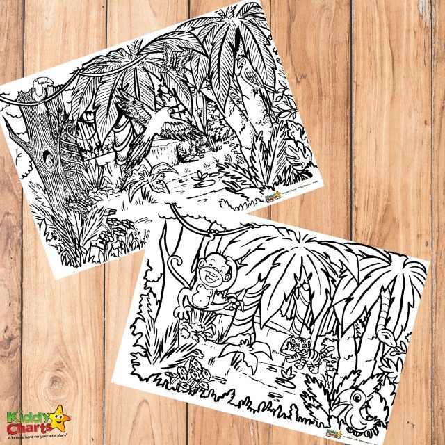 Jungle Coloring For Adults And Kids Kiddycharts Coloring