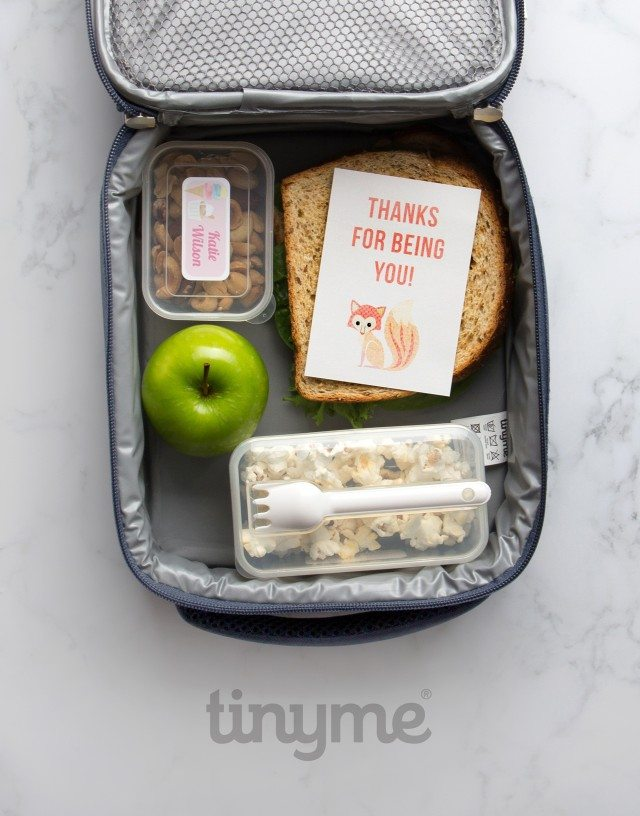 As you can see, the lunch box notes are adorable - hide them well though, so your kids are surprised to find them!