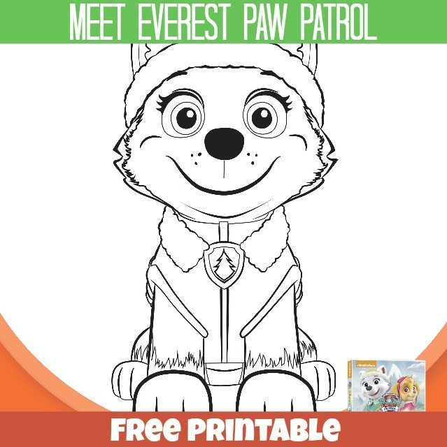 meet everest paw patrol coloring page