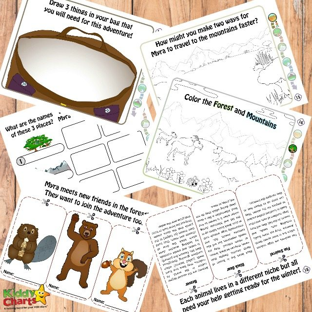 Mountain ecology for kids free printables with Myra Makes