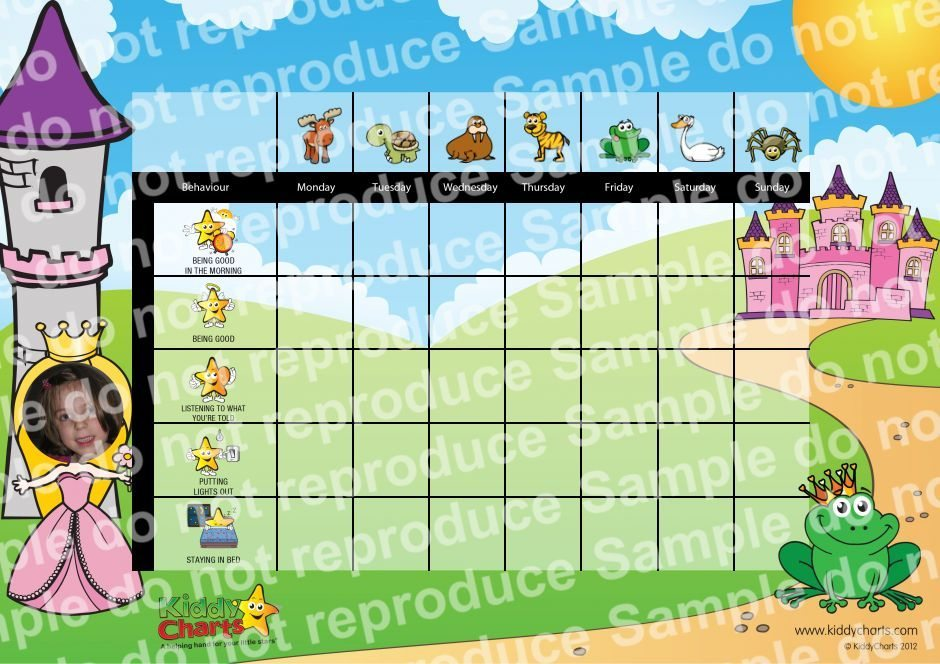 Behaviour Charts are in the Finals - Whoop, Whoop! Check out this Personalised Princess Reward Chart