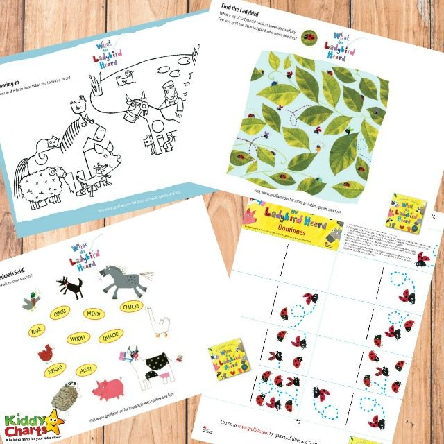 Printable What the Ladybird Heard Activities