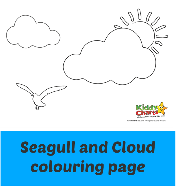 Seagull and Cloud