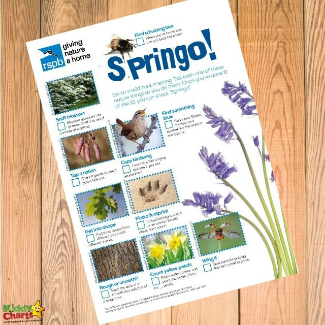 Spring activities to get your kids outside NOW!