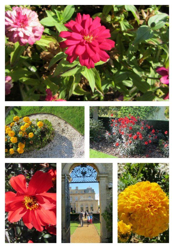 Wrest-Park-Admire-Flowers