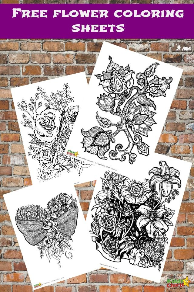 We have four wonderful flower coloring pages for adults for free for your to download. Perfect to be mindful too, and also to relax with. Older children would like to have a go too. Why not pop over and download them all?