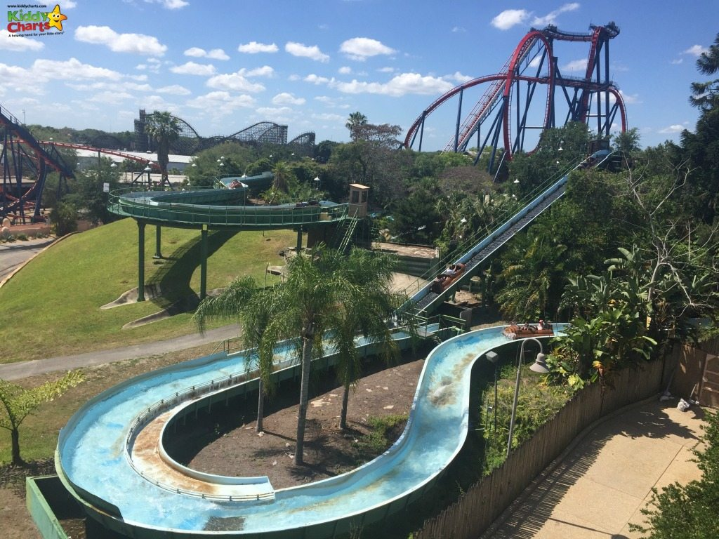 Why busch gardens tampa bay is perfect for big and little kids Busch gardens tampa water park