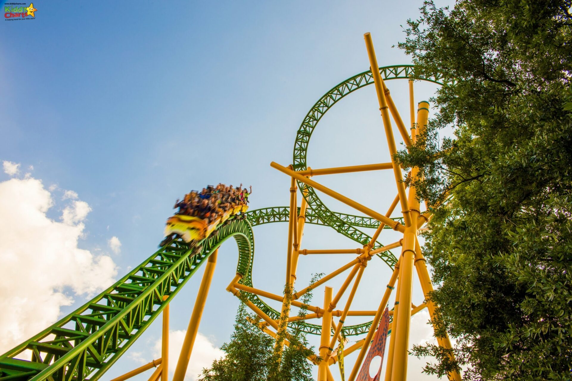 Busche Gardens Tampa's Cheetah Hunt is 3 minutes long - its a long time for you to scream, right!?!? ;-)