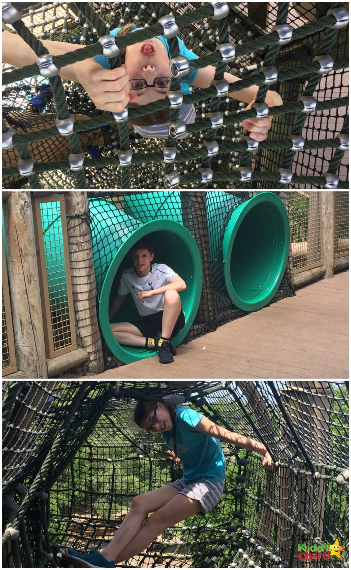 Jungala in Busche Gardens Tampa bay is a great place to monkey around, and just one of the reasons why the kids loved it there. Why not find out some more reasons for going on the site now?