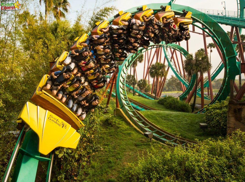 Maybe if you ride the Kumba rollercoaster in Busch Gardens Tampa, you'll understand why it has its name - right?