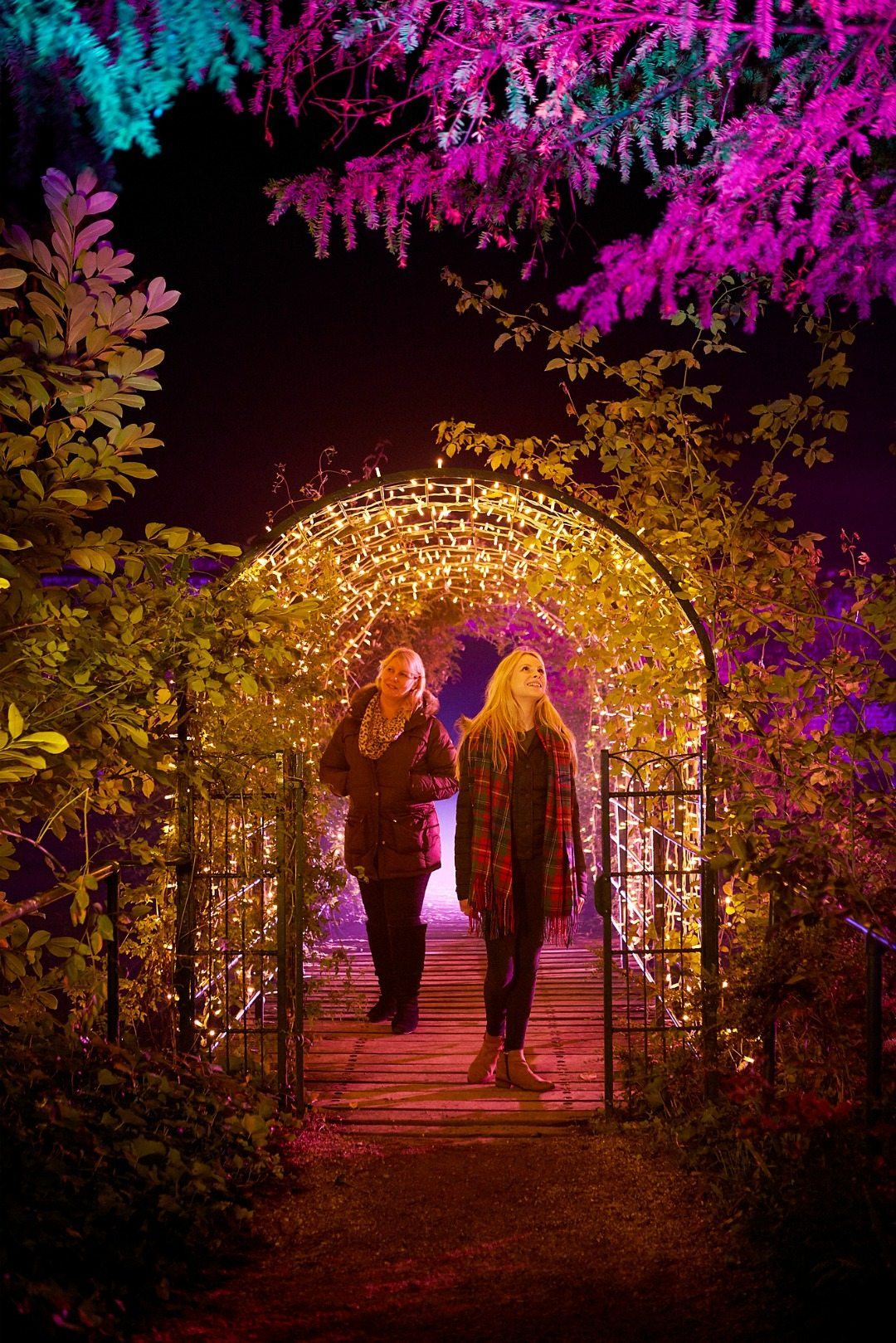 Audley End's wonderful English Heriate property's gardens will be transformed in the Enchanted Events before Christmas - beautiful!