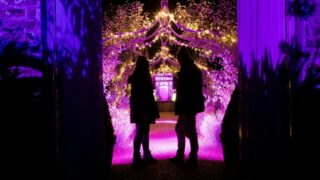 Enchanted Audley End: A magical experience for the whole family #ehenchanted