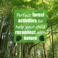 Forest school activities: How to reconnect YOUR kids with nature