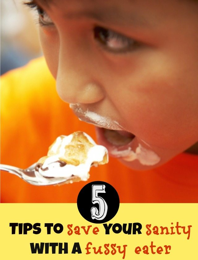 Do you have a fussy eater in the house? Here are five tips for saving your sanity when trying to get rid of those habits. And if all else fails - at least you know you aren't alone with having a kid that isn't happy about eating whatever you put in front of them!
