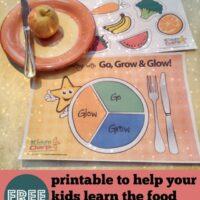 Food group game: Go Grow Glow