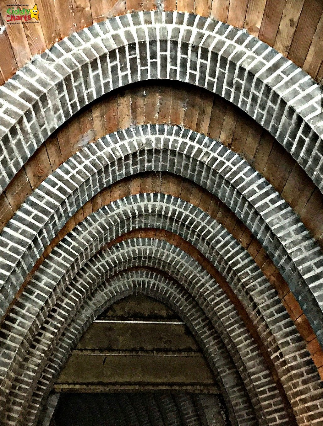 Some of the tunnels on the waterways in Hertogenbosch are simply stunning...just love this roof...