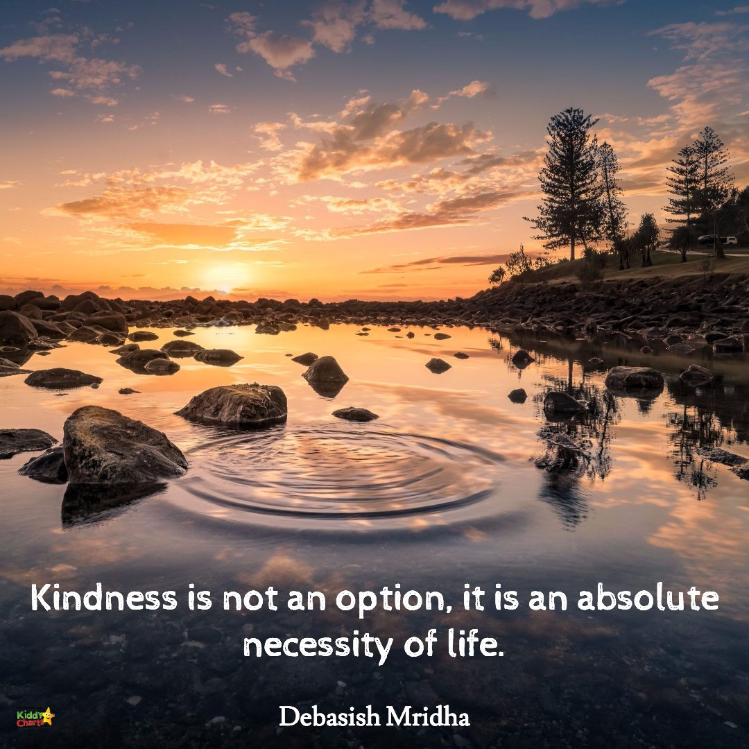Kindness is not an option, it is an absolute necessity in life. #52KindWeeks