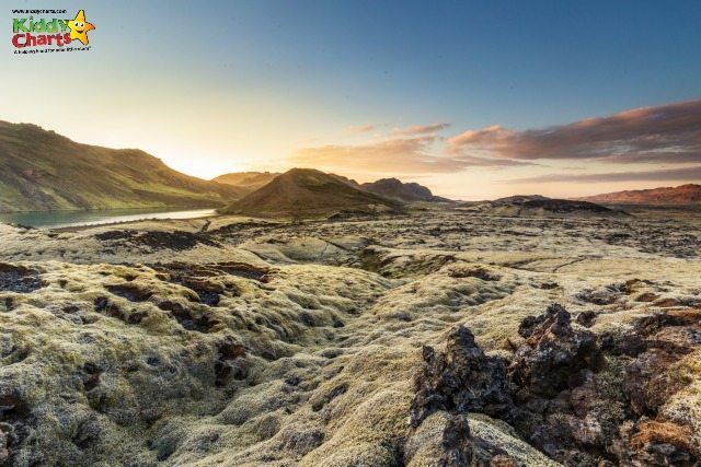 lave fields, Iceland