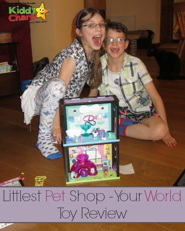 Are you wondering about boying the Little Pet Shop range of toys? What is LPS Your World? We give you the lowdown on the toys honestly on the blog