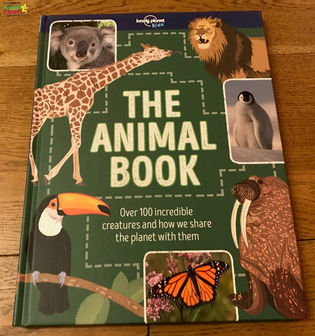 The Animal Book is the first of our Lonely PLanet Kids book reviews - and fantastic resource for your kids, no matter what animals they love!