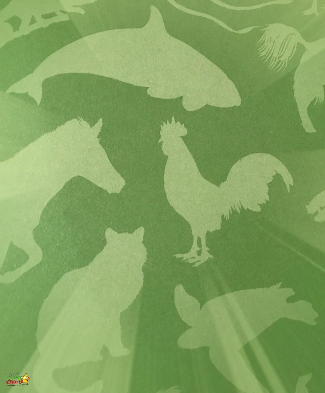 Even the book jacket could make a good wallpaper within the Lonely Planet Kids The Animal Book! ;-)