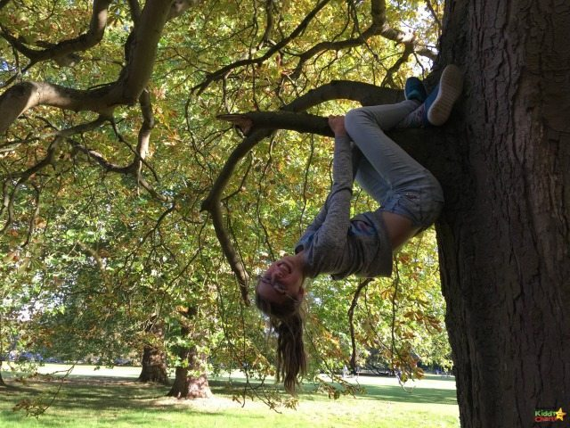"""Phone Backups mean you don't loose mad pictures of your daughter hanging about in trees - which is nice. I love this shot. So """"her""""."""