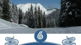 Six tips when booking a family ski-ing holiday with non skiers