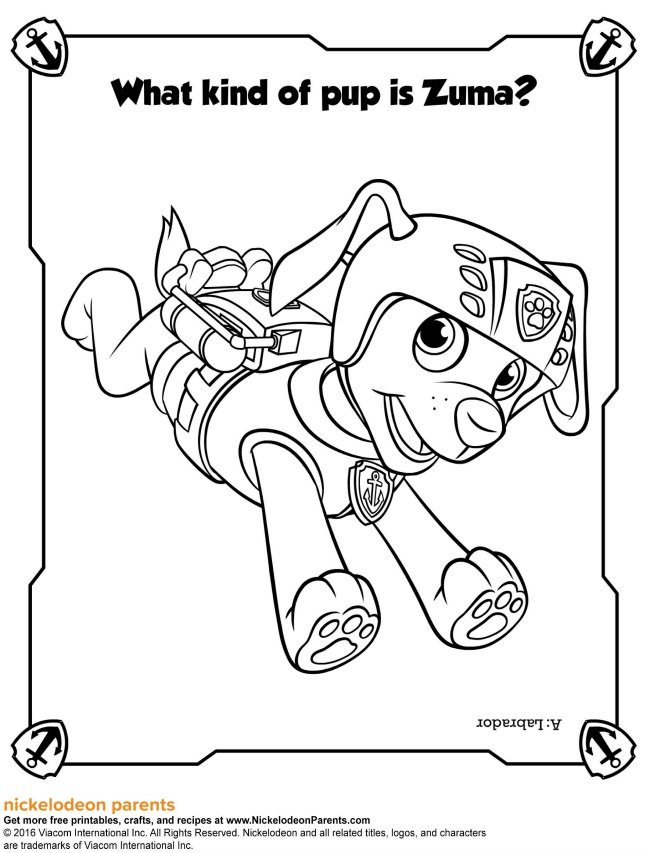 Paw Patrol Activity Sheets and Colouring: Game On!
