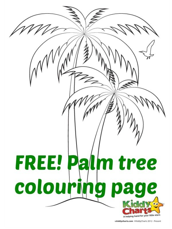 Download this palm tree colouring page to add to your growing collection in our summer countdown