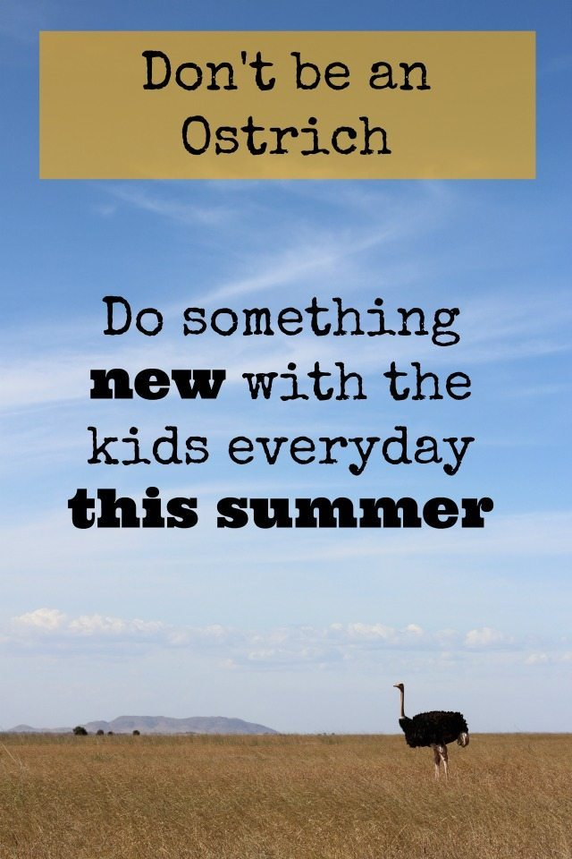 Are you sticking your head in the sand about what you need to do before the summer, or what you can do with the kids OVER the summer? Don't be an Ostrich - just set yourself a simple challenge to do something new every day with them, and life and the summer holiday activities just got simpler!