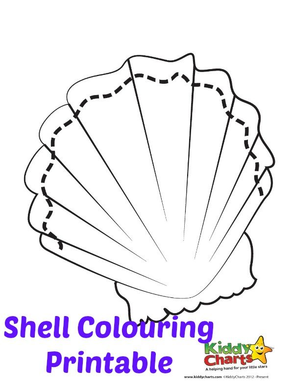 Shells are customary on the beach and today we have a sea shell coloring printable just for you to download and keep