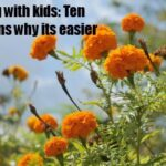 Spring for children: Top Ten Reasons why life is easier