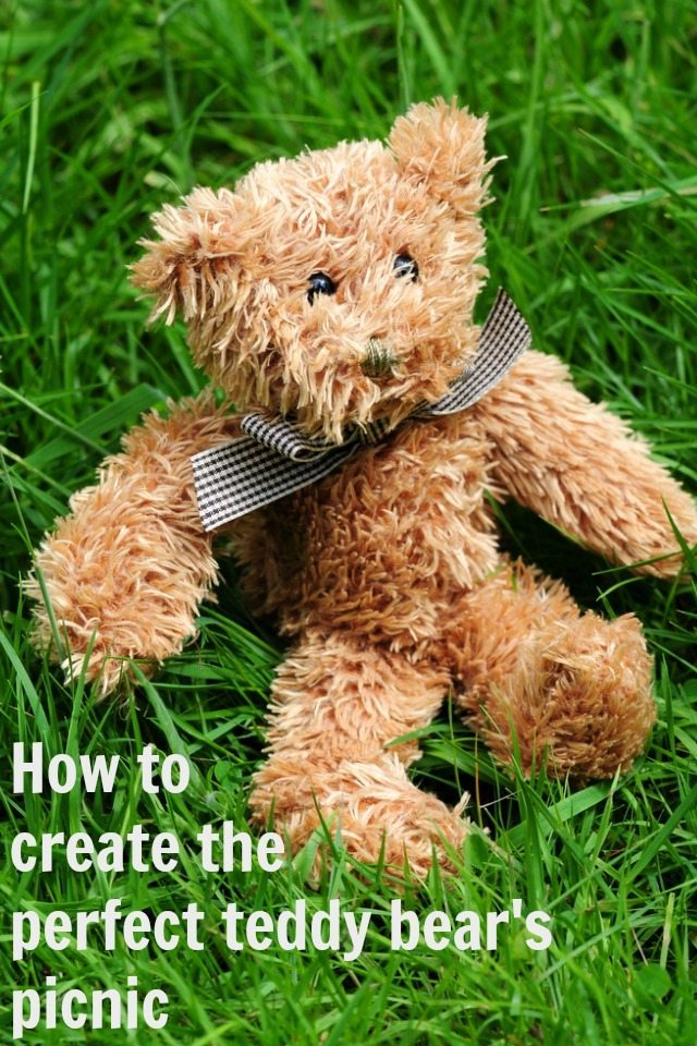 Are you looking to create the perfect teddy bear's picnic for the kids? We have some great ideas for the kids, and all the bears involved! From snanks to desserts, and little tips to make your teddy's picnic rock.