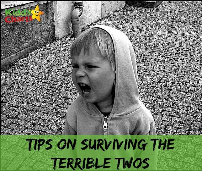 TIps on Surviving the Terrible Twos