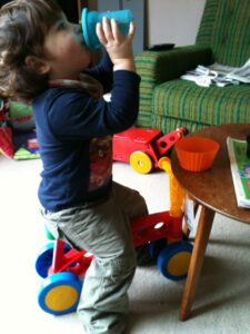 Toddlebike Review 2