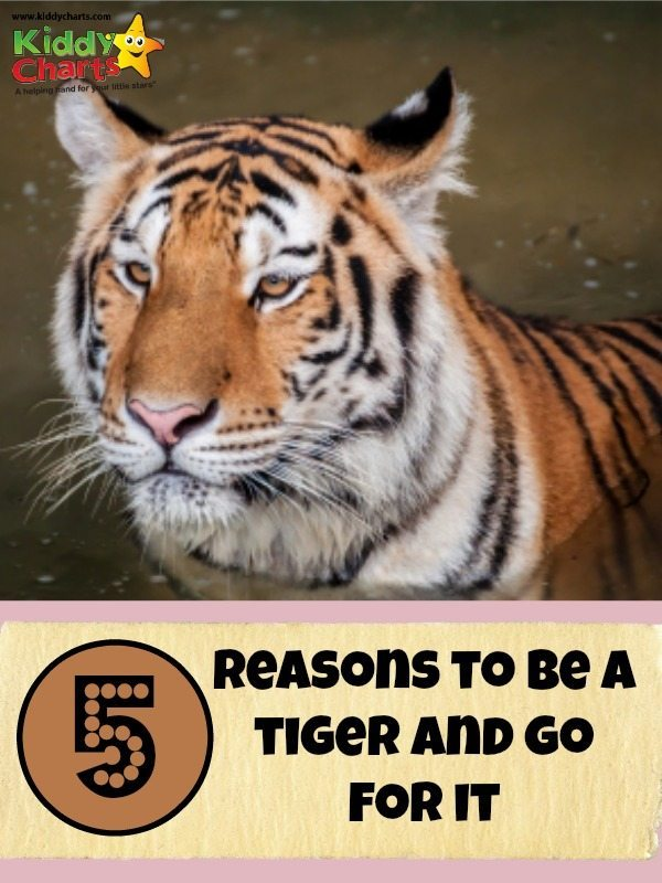 Five reasons to be a wokring mum, and plauy the tiger, so you can just go for it!