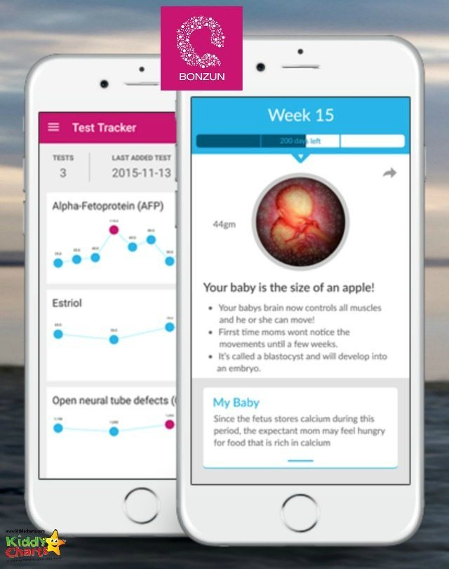 Bonzun is a week by week pregnancy app - its great for easing those pregnancy fears.