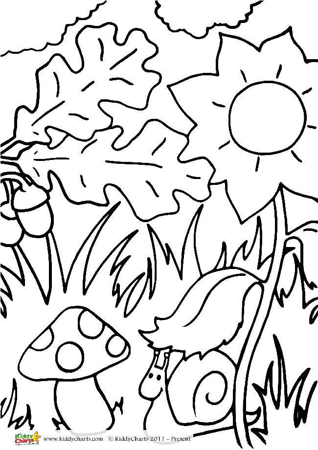 woodland-kids-jpg